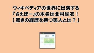 ウィキペディアの世界に出演する『さえぼー』の本名は北村紗衣!【驚きの経歴を持つ美人とは?】